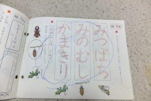 公文,ドリル,宿題,幼稚園生,4歳,国語,継続,早期,教育,式