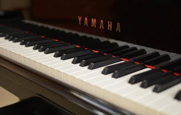 piano 5歳 開始 脳科学 教育