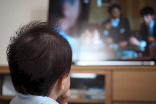 ディズニー英語システム,テレビ,DVD