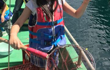 安良里漁港,魚釣り,レビュー