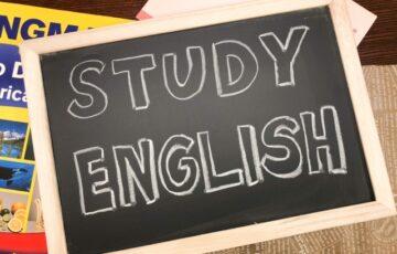 ディズニー英語システム,DWE,英語,バイリンガル,